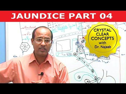 😝 Dr najeeb ophthalmology lectures torrent | Dr najeeb medical