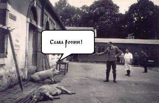 Свобода Савченко в обмен на снятие санкций ПАСЕ с России не обсуждается, - Немыря - Цензор.НЕТ 8135