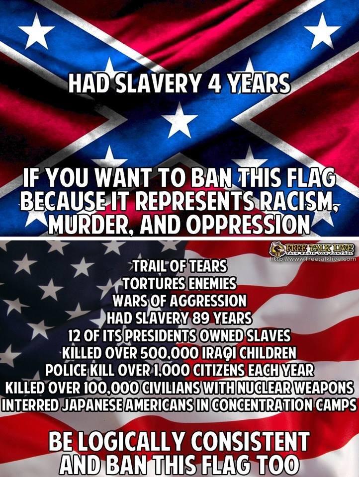 Bikini meme flag confederate