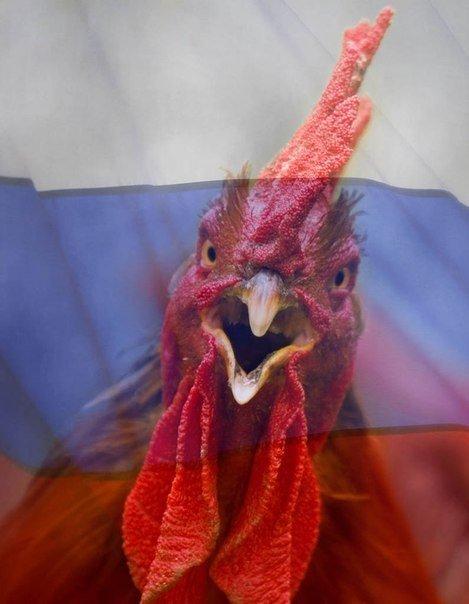 """Украинцы, стоя на коленях, простились с двумя бойцами """"Правого сектора"""" Доком и Гуцулом, погибшими при обстреле шахты """"Бутовка"""" - Цензор.НЕТ 8941"""